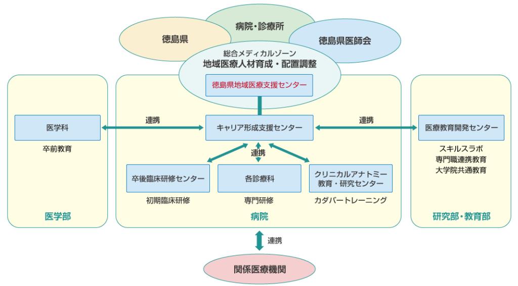 徳島大学における医師のキャリア形成支援組織