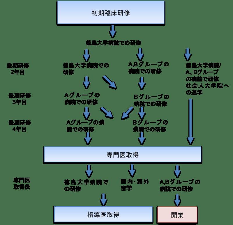 徳島大学病院眼科専門研修プログラムローテーション例(図)